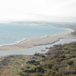 fiume Platani