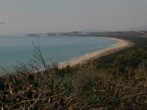 spiaggia di selinunte