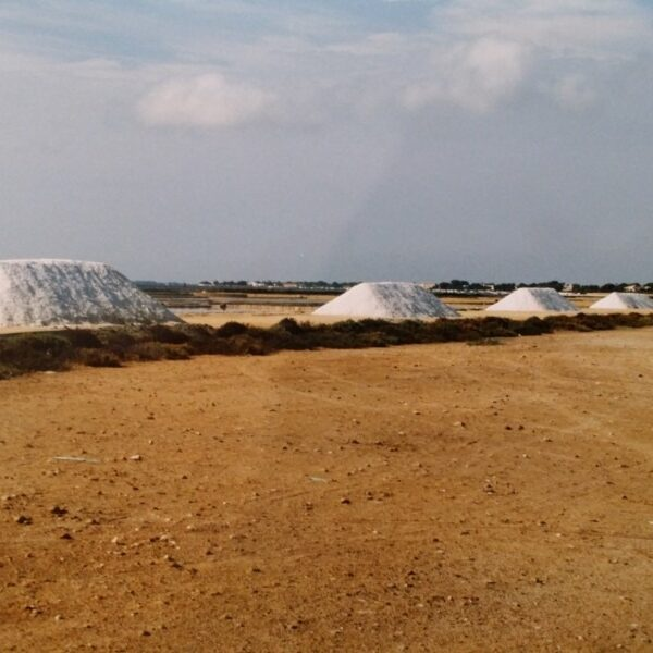 SALINE DI MARSALA